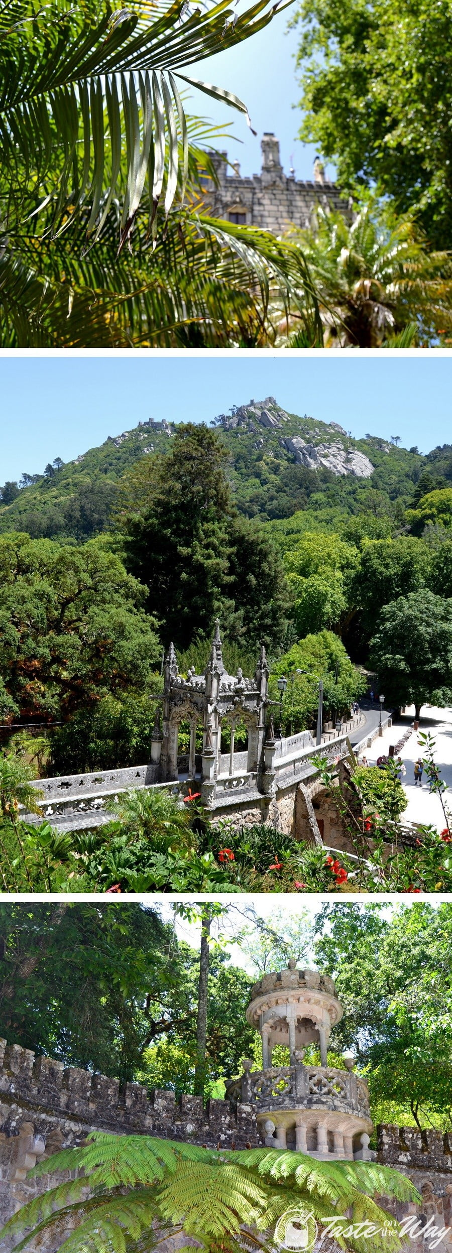 One of the top things to do on a #daytrip to #Sintra, #Portugal is to discover the mystical religious symbols in Quinta de Regaleira gardens. Check out for more! #travel #photography @tasteontheway