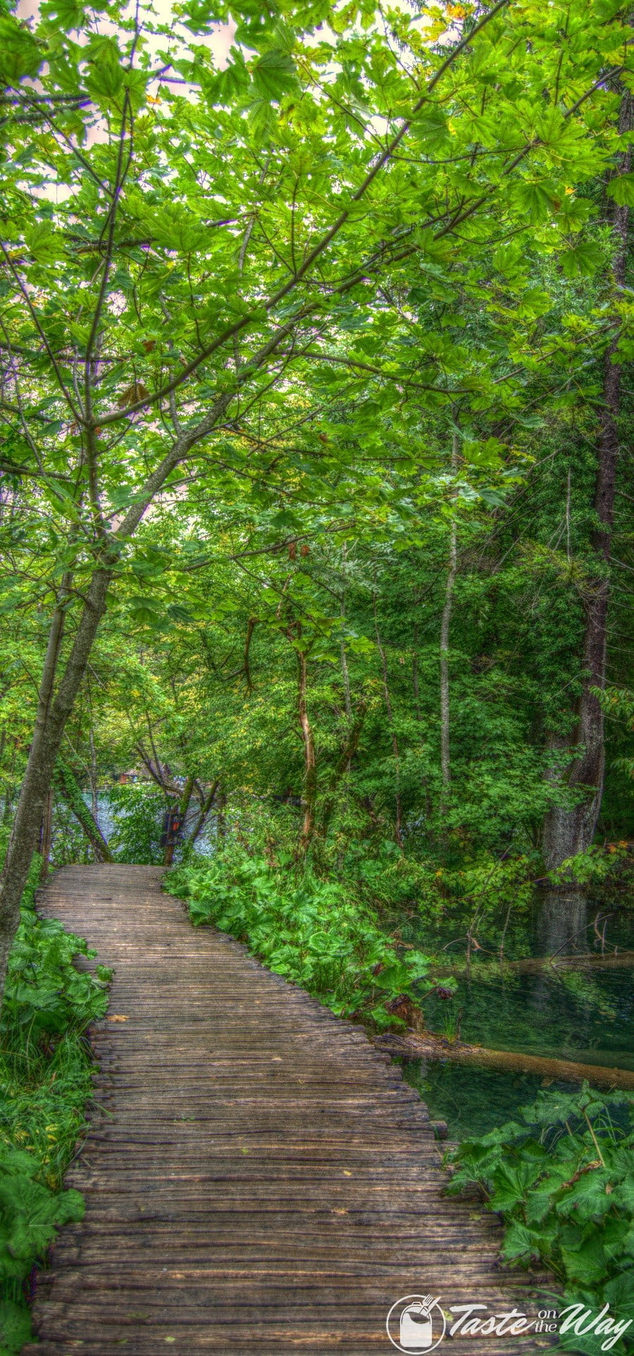 One of the top #tips visiting #Plitvice Lakes National Park in #Croatia is to watch out out for the slippery paths. Check out for more! #travel #photography @tasteontheway