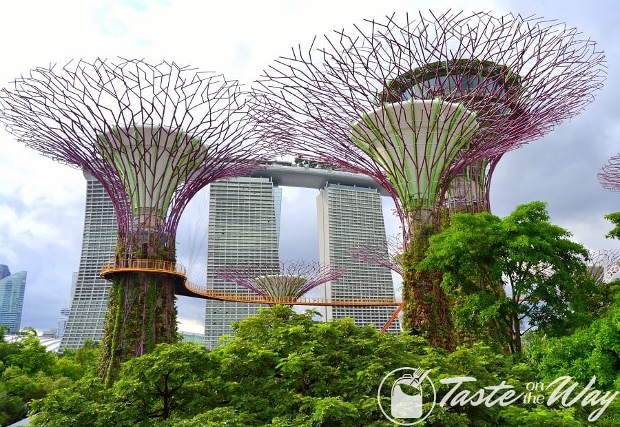Top 10 Best Things to Do in Singapore