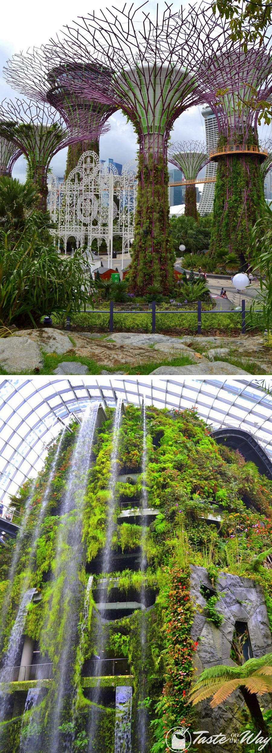 Top 10 Best Things to Do in Singapore - Visiting the Cloud Forest in Gardens by the Bay is just one of the top #thingstodo in #Singapore. Check out for more! #travel #photography @tasteontheway