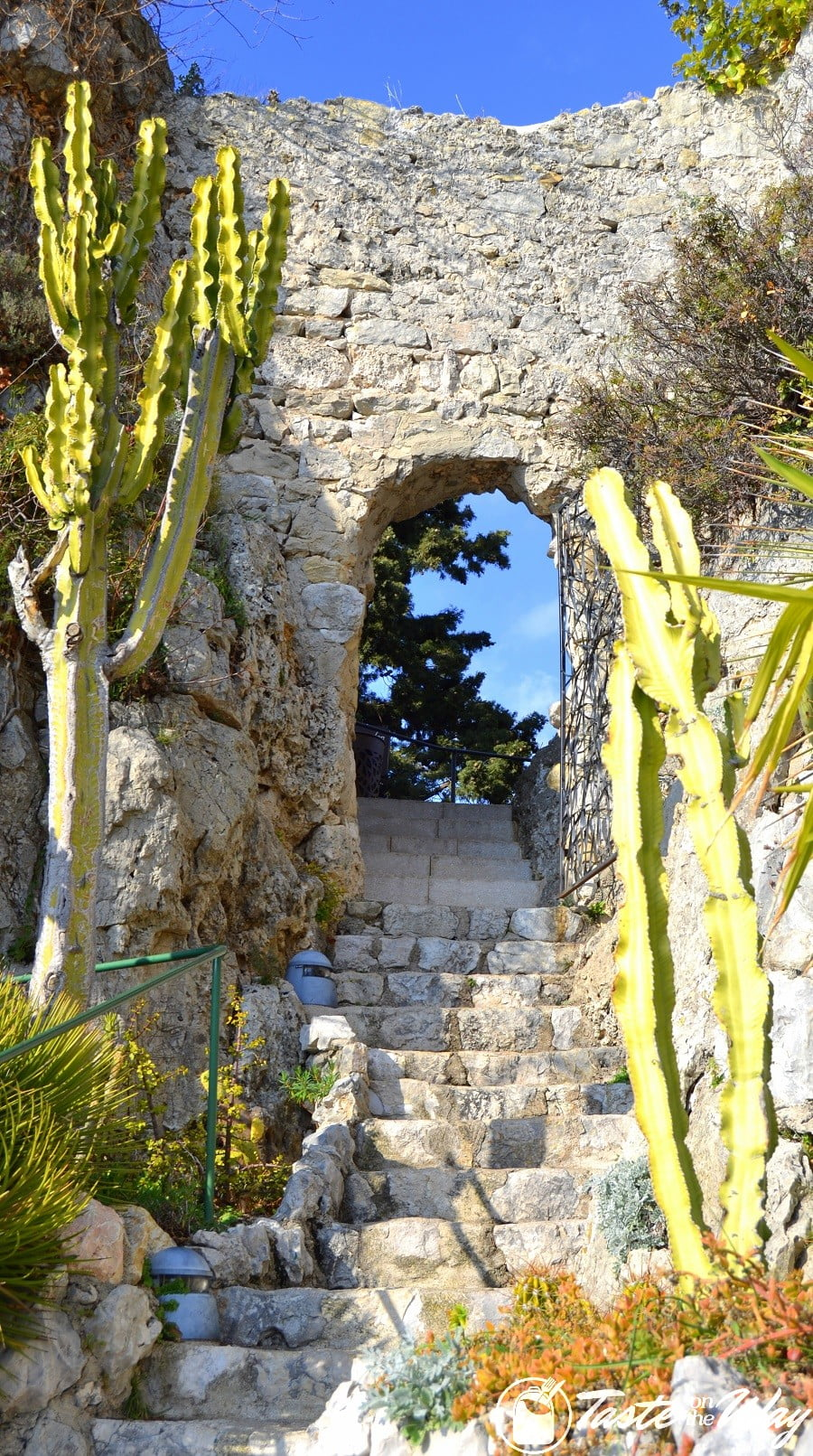 Things to Do in Eze Village, France - an arc in the botanic garden #travel #photography #France