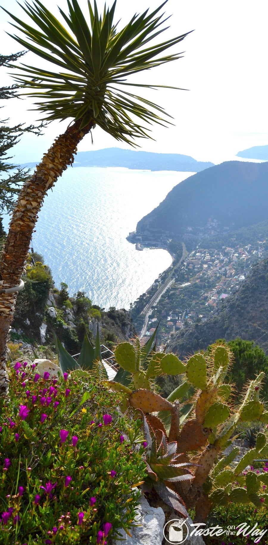 Things to Do in Eze Village, France - overlooking the sea from the botanic garden #travel #photography #France